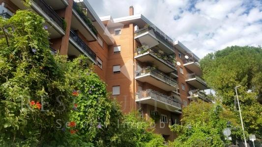 Roma,VIA CHIUSI,1 Camera da letto Camere da letto,4 Locali Locali,1 BagnoBagni,Appartamento,VIA CHIUSI,1013
