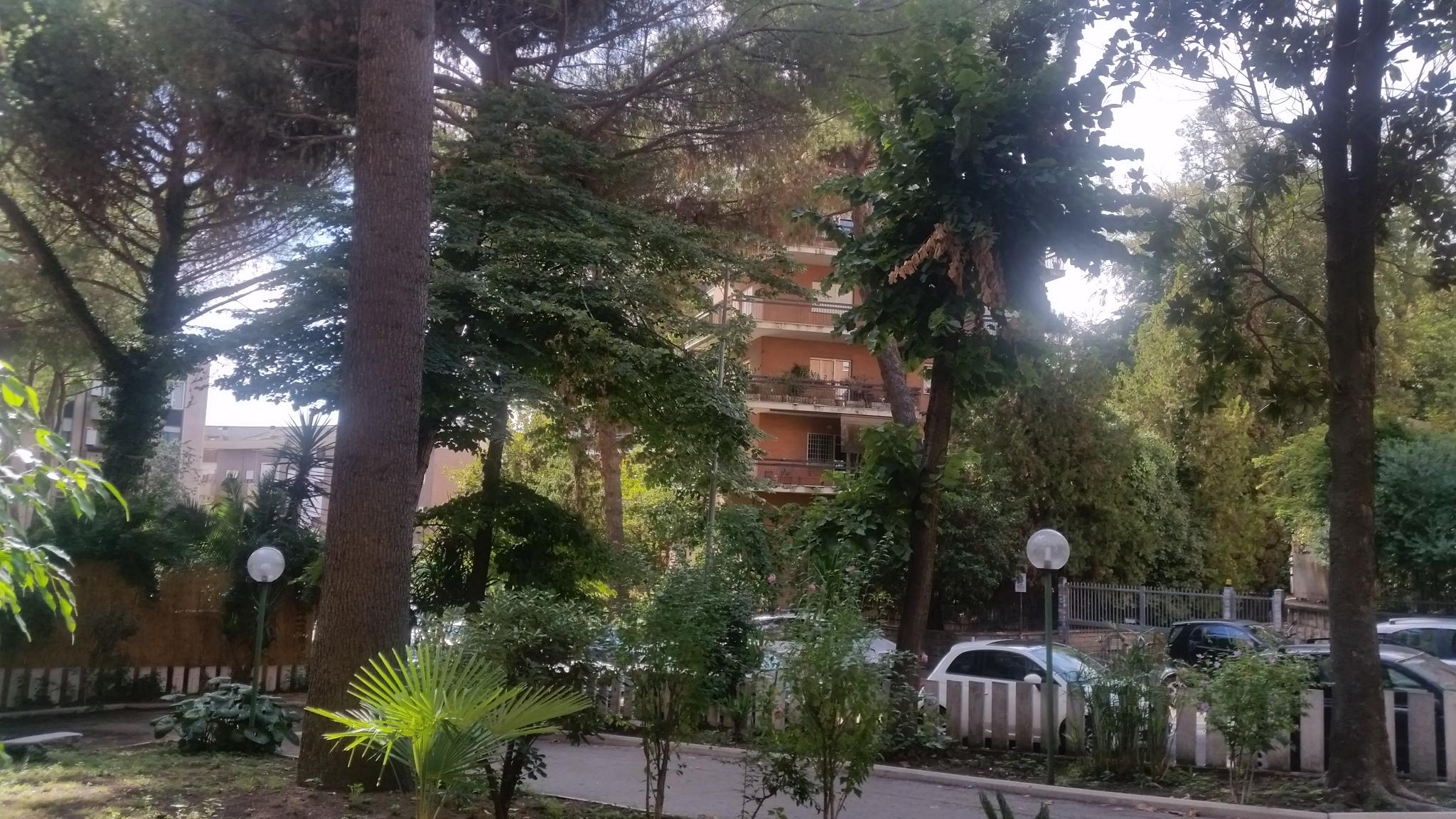 Roma,Chiusi,1 Camera da letto Camere da letto,4 Locali Locali,1 BagnoBagni,Appartamento,Chiusi,1026